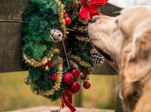 veilige kerst